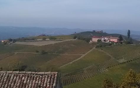 Azienda Agricola Boasso